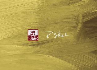 r shah artist psd to wordpress web design